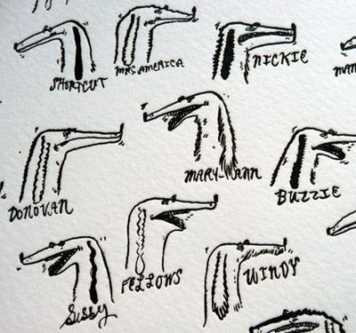 Dogsdetail